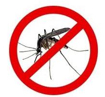 Obavijest – provođenje mjera suzbijanja komaraca