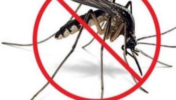 Obavijest – provođenje mjera suzbijanja komaraca!